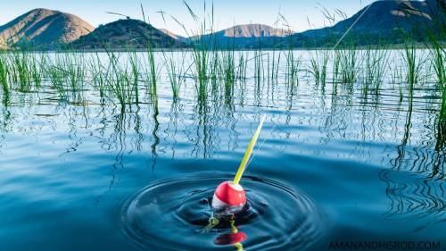 fishing with floats/bobbers