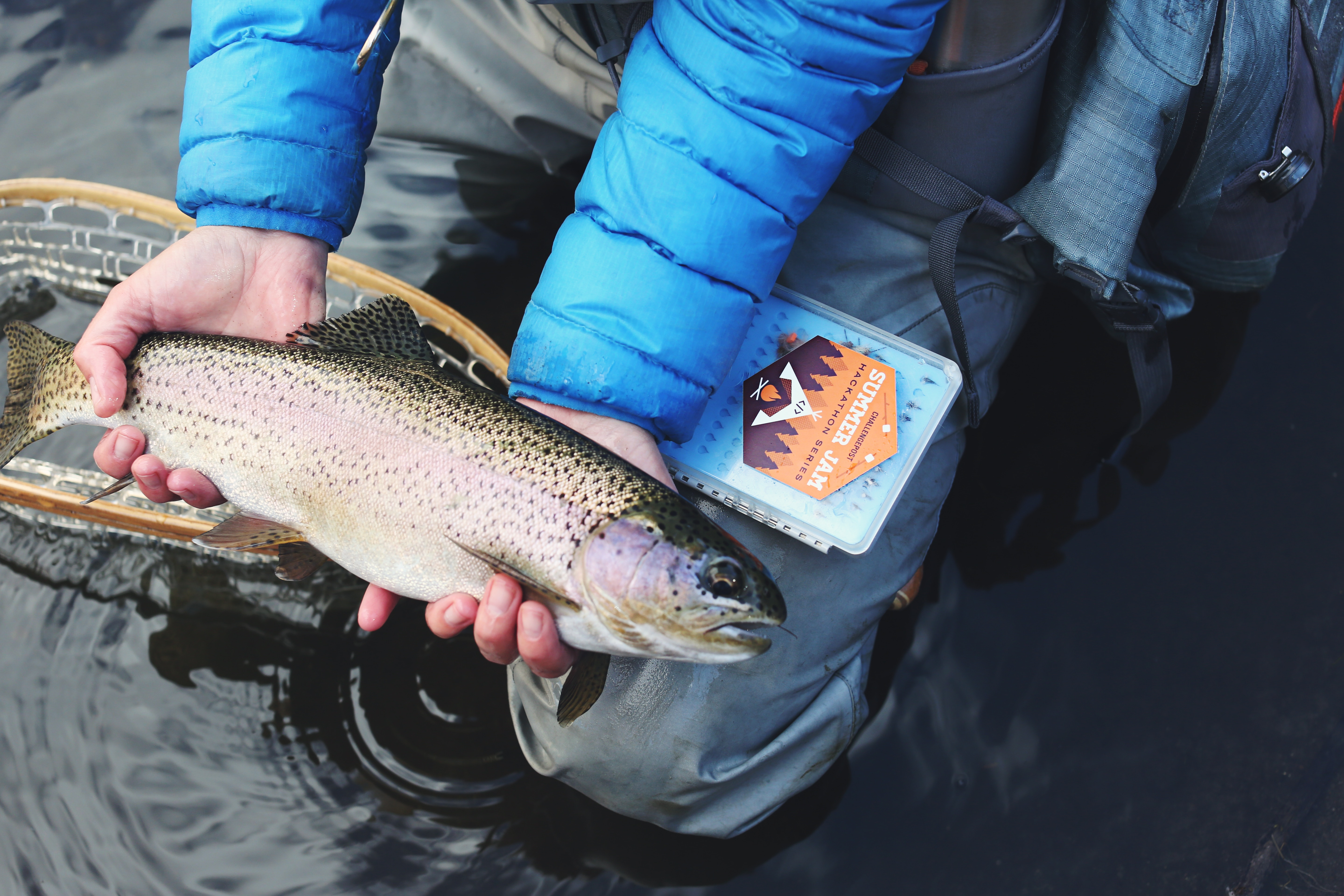 8 Stillwater Fly Fishing Tips and Tactics