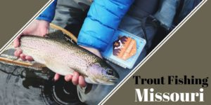 trout caught fishing in Missouri