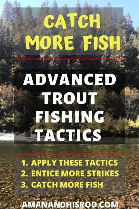 tips for catching trout in rivers