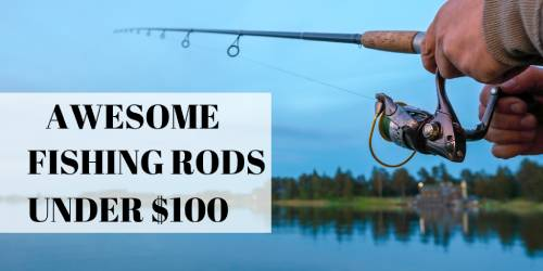 fishing rods under $100