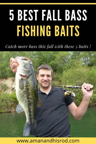 5 best fall bass fishing lures