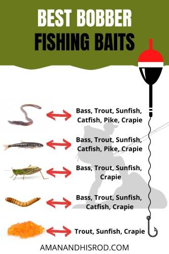 best bobber fishing baits and what fish you will catch with them.